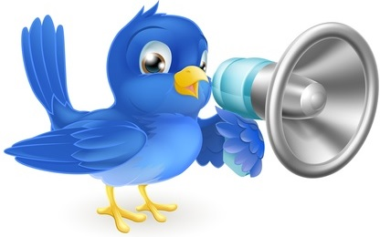 formation twitter profesionnel